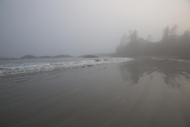 Beach6R3A6159