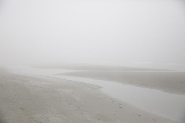 Nebel6R3A6322